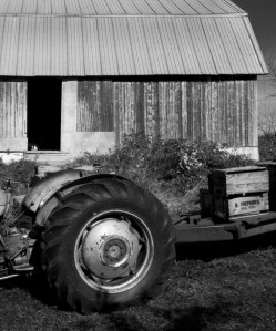 cropped-cropped-barn-and-tractor-22.jpg